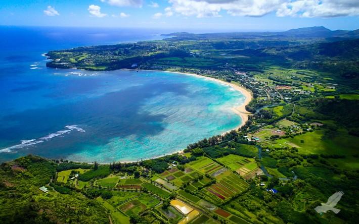 financial-advisors-from-kauai